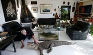 Cụ ông nuôi hơn 400 động vật bò sát trong nhà