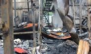 Vụ cháy sát BV Nhi Trung ương: Công an mời ông Hiệp khùng lên làm việc