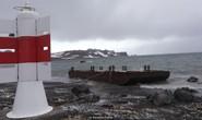 Dấn thân vào hiểm họa Nam Cực
