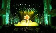 Xúc động với sân khấu Mai Vàng lần thứ 24
