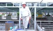 Ông Dũng lò vôi  muốn giải độc cho môi trường Việt Nam