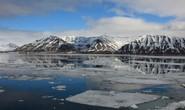 Phát hiện dấu vết siêu quái vật tí hon ở Bắc Cực