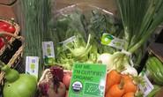 Quỹ đầu tư Mỹ đổ vốn vào chuỗi cửa hàng Organica