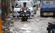 Nhiều rốn ngập ở TP HCM không bị ngập như dự báo triều cường
