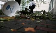 Siêu bão Hagibis đe dọa Nhật rồi băng Thái Bình Dương đến Mỹ