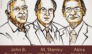 Nobel Hóa học 2019 vinh danh sáng chế pin
