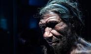 Một loài người khác tuyệt chủng vì hôn phối tử thần với tổ tiên chúng ta