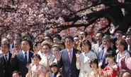 Bữa tiệc vườn xuân đầy đe dọa của ông Abe