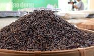 Gạo ST 24 đoạt giải nhất hội thi gạo ngon Đồng Tháp 2019