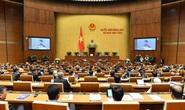 Quốc hội bầu chủ nhiệm Ủy ban Pháp luật