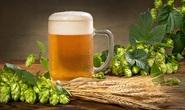 Phát hiện thần dược đẩy lùi cao huyết áp, tiểu đường trong... bia