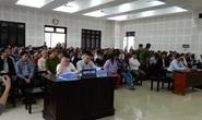 Gần 300 người dự phiên tòa tranh chấp hợp đồng môi giới đất nền