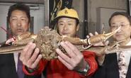Ai được ăn con cua tuyết đắt kỷ lục 46.000 USD?