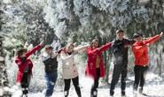 Tuyệt đẹp khu rừng châu Âu tuyết trắng giữa lòng Hà Nội