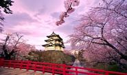8 lưu học sinh Việt được nhận học bổng của Nhật Bản