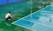 Lý Hoàng Nam và Daniel Cao Nguyễn chưa thể thi đấu vì bão đổ bộ