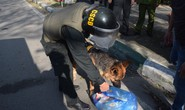 Thuê xe tang lễ để vận chuyển 14.000 viên ma túy vào miền Trung tiêu thụ