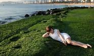 Ngắm bãi rêu xanh tuyệt đẹp hút khách ở Nha Trang