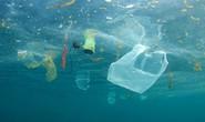 Hố rác vô tận trong lòng đại dương
