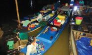 Mê mẩn ở chợ cá đồng lớn nhất miền Tây
