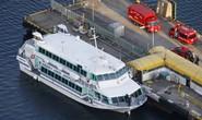 Nhật Bản: Phà cao tốc tông... cá voi, gần trăm người bị thương