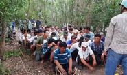 CLIP: Trường gà khủng đến khó tin ở Tiền Giang