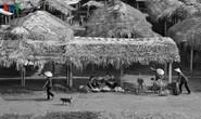 Chợ quê đồng bằng Bắc Bộ đẹp bình dị, thân thương