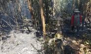 200 người đang chữa cháy rừng ở Gia Lai