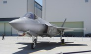 """Nhật Bản xác nhận Tia chớp"""" F-35 của Mỹ rơi xuống biển"""
