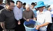 Hình ảnh Tổng Bí thư, Chủ tịch nước Nguyễn Phú Trọng làm việc ở Kiên Giang