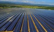 Đại hội đồng Cổ đông GEC 2019: Trọng tâm điện mặt trời, đa dạng danh mục sang điện gió
