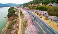 Hàn Quốc mở trung tâm đăng ký visa tại TP HCM