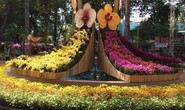 Festival Hoa lan TP HCM khai mạc, miễn phí cho khách tham quan