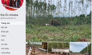 Đồng Nai cảnh báo về dự án của Alibaba ở huyện Xuân Lộc