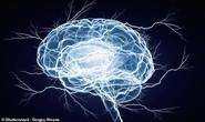 WHO: 12 điều nên làm để đẩy lùi mất trí nhớ