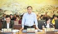 Chủ tịch EVN cho rằng đại biểu Lê Thu Hà tính chưa đúng về giá điện
