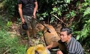 Khởi tố hai người đàn ông liều mạng cưa quả bom nặng hơn 300 kg