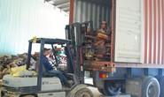 Khởi tố vụ án bán vật chứng trong vụ án gỗ trắc lậu tại Đà Nẵng