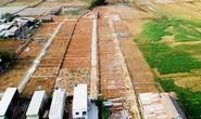 Cò đất lại lộng hành ở vùng ven TP HCM