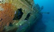 Mộ phần dưới đáy biển lộ diện sau 1 thế kỷ