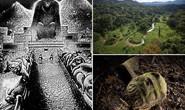 Nhiều loài tuyệt chủng sống dậy ở Thành phố của Thần Khỉ