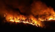 Thủ tướng Chính phủ: Xử lý trách nhiệm quản lý của người đứng đầu khi để xảy ra cháy rừng