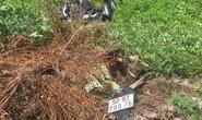 Băng qua đường sắt, thanh niên bị tàu hỏa tông tử vong tại chỗ