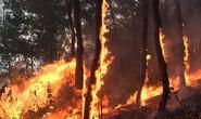 Người phụ nữ bị lửa thiêu khi chữa cháy rừng kinh hoàng ở Hà Tĩnh và Nghệ An