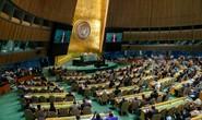 Đắc cử Ủy viên không thường trực HĐBA LHQ: Việt Nam sẽ đóng góp nhiều cho thế giới