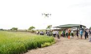 Nông dân miền Tây ngạc nhiên với thiết bị bay phun thuốc trừ sâu