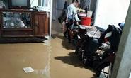 Lũ quét bất ngờ gây thiệt hại nặng ở Lâm Đồng