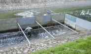 Chuyên gia Nhật Bản đưa ra 6 tiêu chí hồi sinh sông Tô Lịch