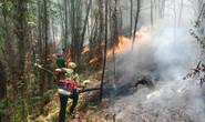 Hà Tĩnh lại xảy ra cháy rừng, hàng trăm người dập lửa dưới trời nắng nóng
