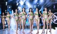 Cuộc thi Hoa hậu Thế giới Việt Nam: Đề cử 5 gương mặt Người đẹp biển